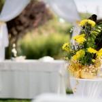 Сватбена фотография и видео заснемане с дрон